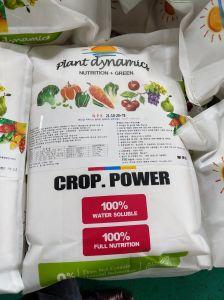 Alta de aminoácidos de Fertilizante de potássio