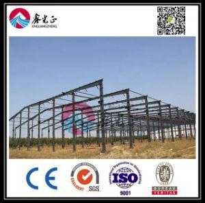 Fornitore esperto del gruppo di lavoro della struttura d'acciaio (BYSS013)