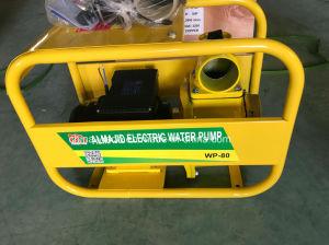 Wdsu-100b de elektrische Pomp van het Water 5.5kw, Enige Fase, de Draad van het Koper