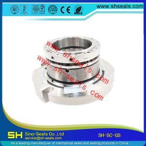 - Дисплей GS Flowserve Sh-Sc Mehchanical уплотнение