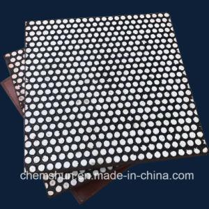 Abrasif soutenue en caoutchouc résistant à l'usure des plaques en céramique
