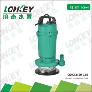 La pompe à eau submersibles de haute qualité Qdx série avec ce