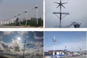 ボートのための300W 12V/24Vの風力の発電機の風力の/Windの小さい製造所