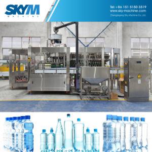고명한 상표 전기 자동적인 순수한 물 병조림 공장