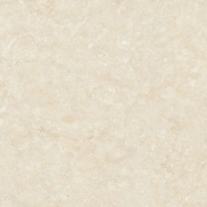 80*80 de volledige Marmeren Tegel Mt88302 van het Lichaam