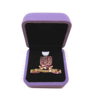 Fabrik-Zubehör-kundenspezifische verschiedene Form und Firmenzeichen-Metallabzeichen-ReversPin (214)