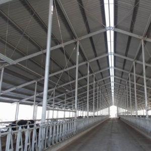 직접 공장 Prefabricated 강철 목장 또는 가축 야드 또는 가축 집