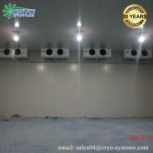 5 Unidade de condensação HP a pé no sistema de refrigeração do refrigerador