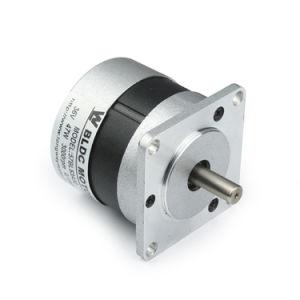 36V motor de c.c. sem escovas para Indústria de porta automática