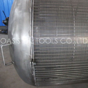 Fabrication en usine de dessalement de l'eau de grande taille Pasive Filtre d'écran d'admission