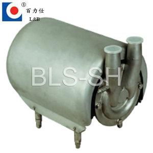 Steelステンレス製のSelfの吸引Pump