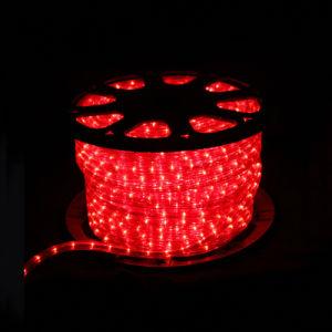Cuerda de LED de luz (SRRLS-2W)