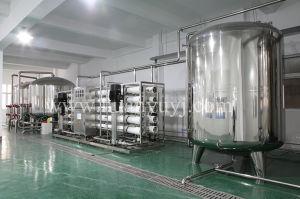 Pure Water (1時間あたりの8000L)のための水Filter