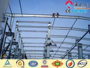 Edificio de la estructura de acero para el taller/el almacén (SSWW-16029)