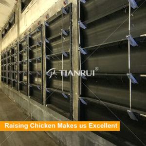 A Granja automática para venda de equipamento de aves de capoeira