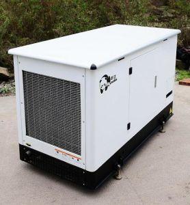 Combineer van het Verwarmen en Macht (CHP)