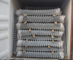 10La jauge grillage galvanisé/Maille de maillon de chaîne/le maillon de chaîne à mailles de clôture
