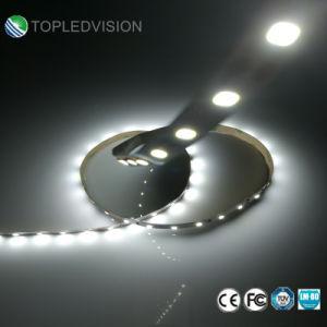Fita LED flexível2835 SMD 30 LEDs/M 6W com embalagem da caixa de Cor