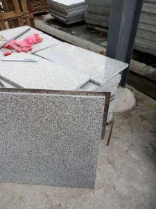 Granito più poco costoso del granito grigio-chiaro cinese del granito G603