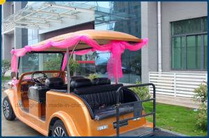結婚式のカートの電気ゴルフカート型のカート