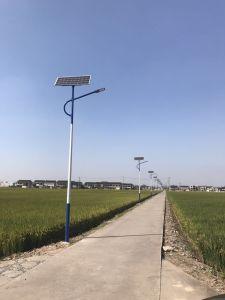 8mポーランド人80WのセリウムIP68 (DZS-004)が付いている太陽街灯