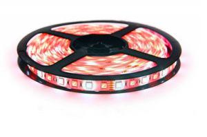 5050 RGBW/LED de 96m con certificación UL Cinta LED