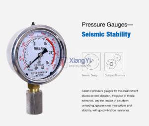 De aço inoxidável de alta pressão Reacto -1L 2L 3L 5L