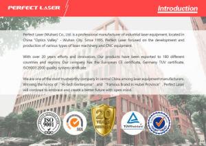Acrylfurnierholz-Leder CO2 Laser MDF-Ausschnitt-Maschine