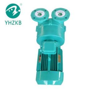 Wasser-Schleifen-Vakuumpumpe mit Flansch