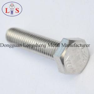 Hexagon HoofdBout van het roestvrij staal met Uitstekende kwaliteit
