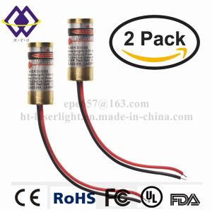 Del fornitore migliore 20W 40W luce laser personalizzata dell'azzurro dell'indicatore del commercio all'ingrosso