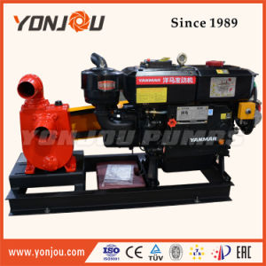 Motor diésel con bomba de agua