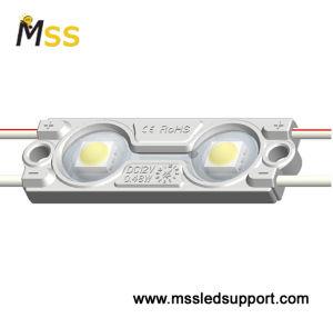 Módulo LED de moldeo por inyección/Módulo LED LUZ