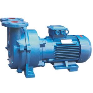 2BV Series Anel de água da bomba de vácuo