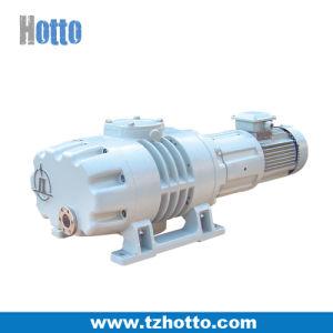 Магнитный диск корни вакуумный насос с ISO9001: 2000 (ZJC150)