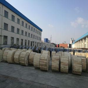 Núcleo de 6 metro Cable de fibra óptica blindada exterior
