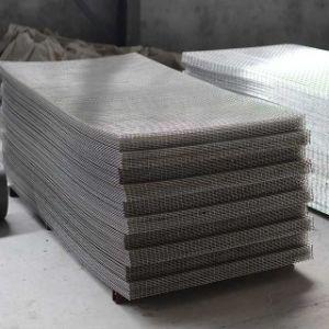 /Stainlessの電流を通された鋼鉄か溶接された網パネル
