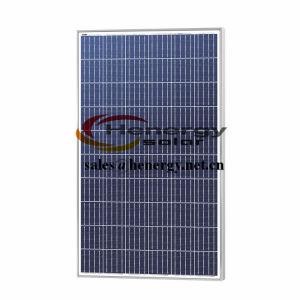 250W Policristalino Módulo Solar para sistema PV
