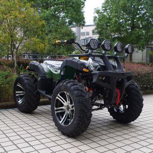 2017 het Nieuwe Hoogtepunt van de Fabrikant - grootte 1500W Elektrische ATV (jy-ES020B)