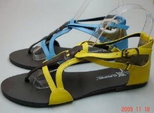 Lady Shoes (3234)