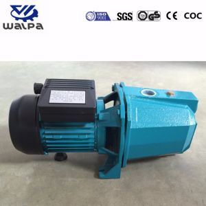 Жиклер с электроприводом высокого расхода насоса воды 0.5HP Jet60L с полной медного провода
