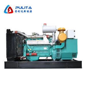 10-1000kw液化石油ガスの発電機
