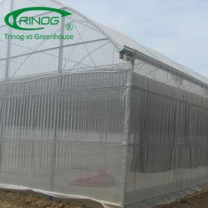 Geen lassen geprefabriceerde serrebouw voor agrilandbouwbedrijf