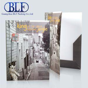 Настроенного файла бумажных мешков для пыли /папку с документами с карманами (BLF-F036)