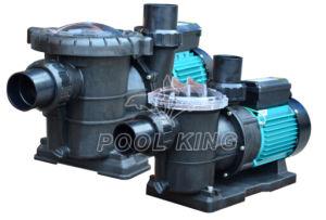 수도 펌프를 위한 Self-Priming 주거 수영풀 펌프