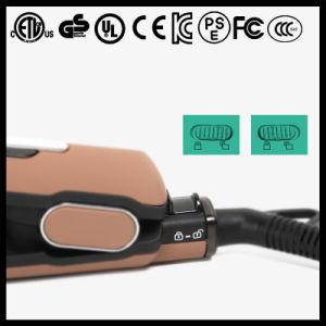 Venda por grosso de ferro planas de cabelo de logotipo personalizado (V183)