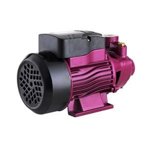 Die chinesischen Hersteller, die Zusatzstrudel hin- und herbewegen, bereiten Diuturnal Pumpe des Wasser-Qb60 auf