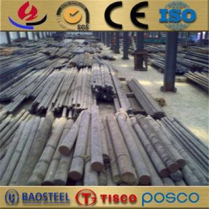 Gedraaid beëindig Roestvrij staal 310/310S om Staaf in Op hoge temperatuur