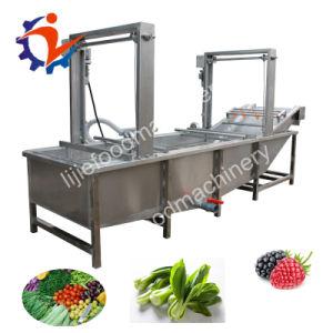 Fruits Fruits de mer Légumes multifonction automatique machine à laver de la bulle