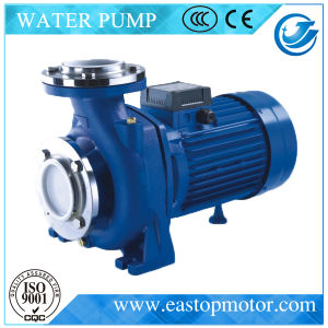 Cpm-3 Suction Pumps per Irrigation con Castiron Support